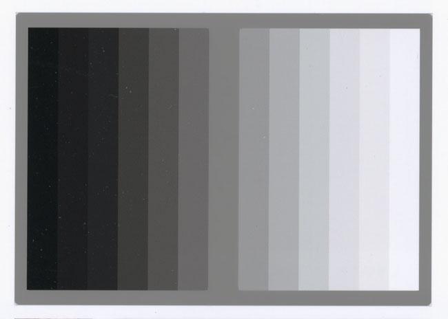 graygold2.jpg