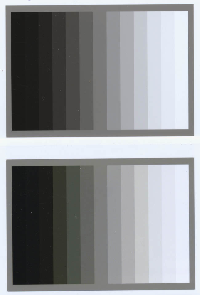 grayprint1.jpg