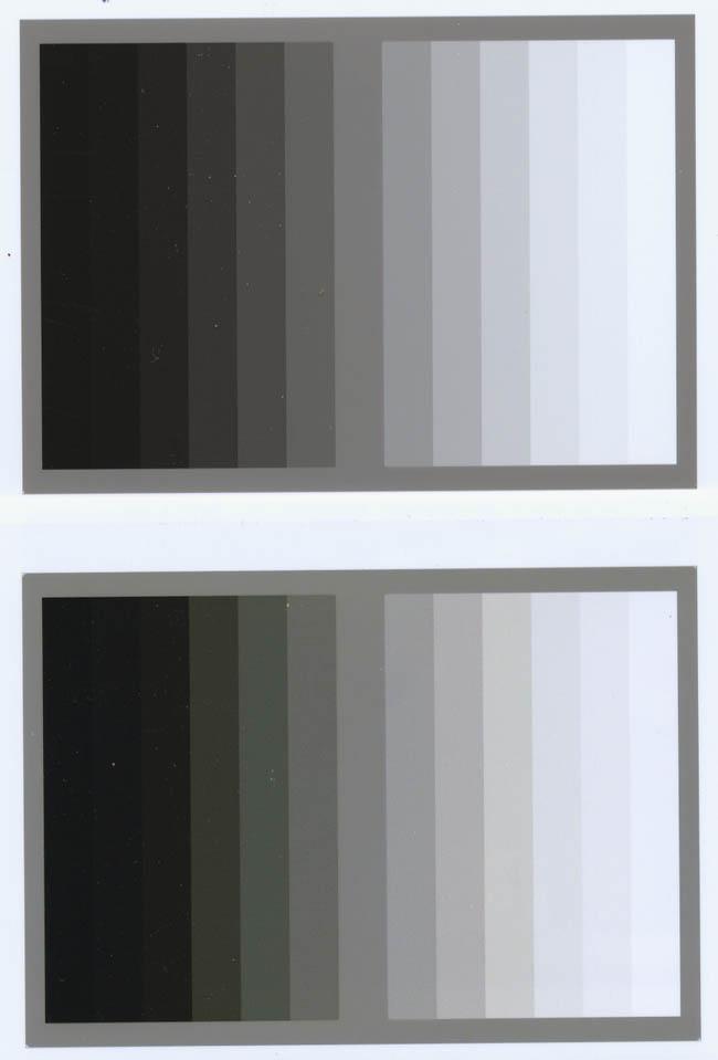 grayprint1.jpg