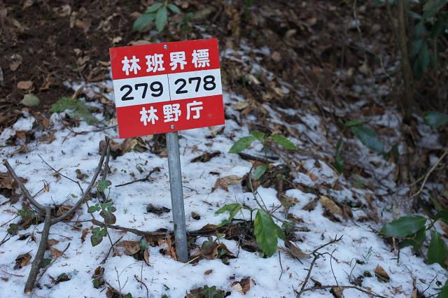 JS2_0469-t.jpg